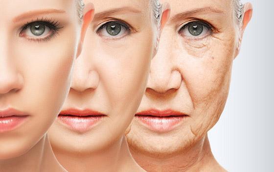 envelhecimento-genetica-evgeny_atamanenko_-_shutterstock